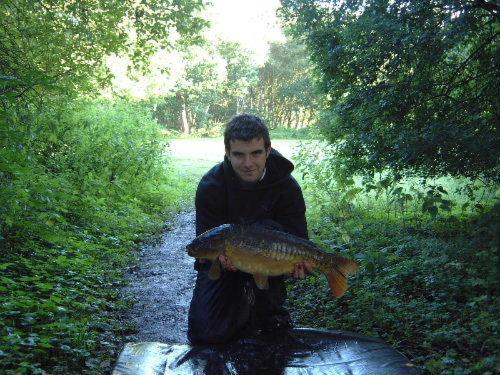 An early morning carp