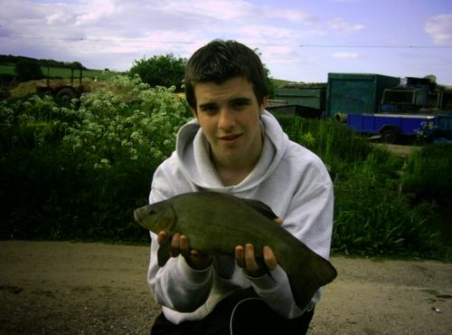 A nice tench
