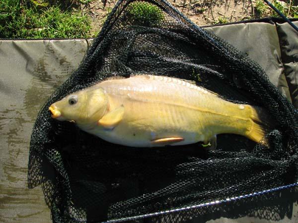 fishing 001 (10)_1.jpg