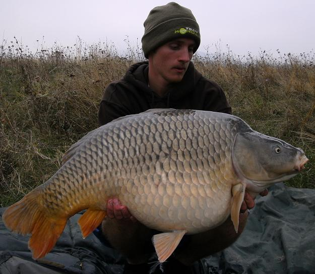 Bulgarian common 40,9 lbs