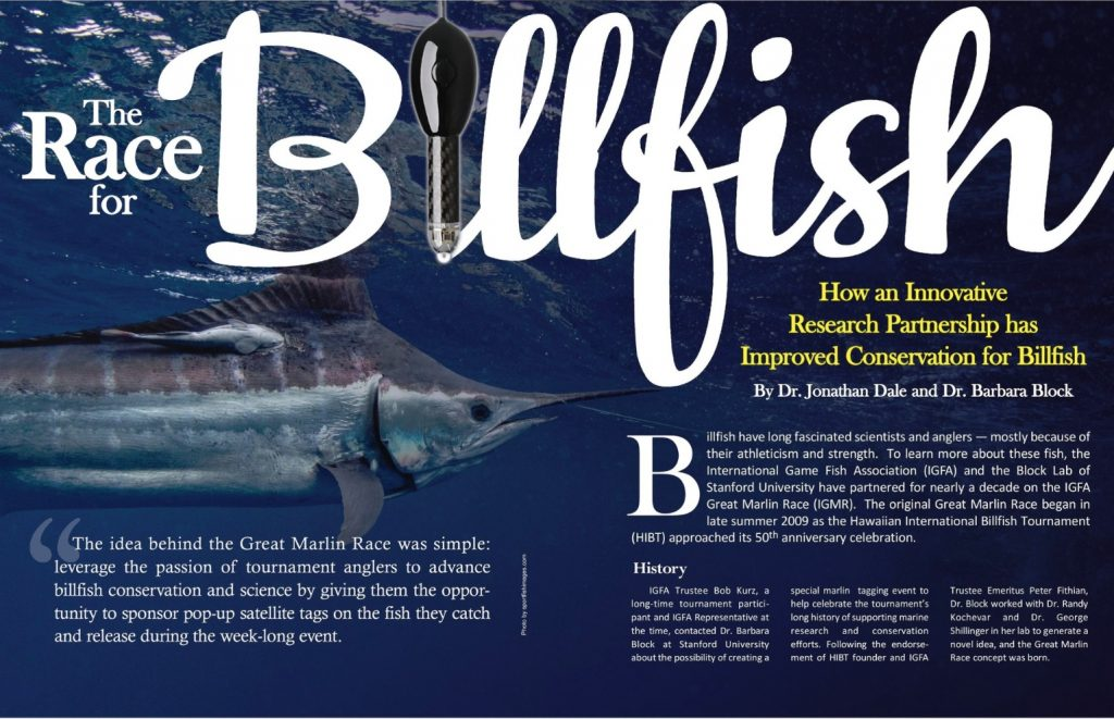 Race20for20Billfish20Article-1024x661.jp